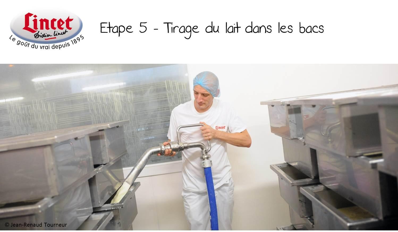 ETAPE 5 Tirage du lait dans les bacs